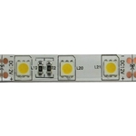 LED p�sek 10mm,b�l� tepl�,60xLED5050/m,modul 5cm,IP65